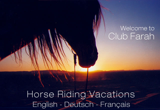 horse riding, horseback riding, horseriding vacations, horse riding vacations, horseback riding tours, desert trips, African horseback riding, horseback riding vacations, horseback rides, horse tours, Morocco, Sahara, desert